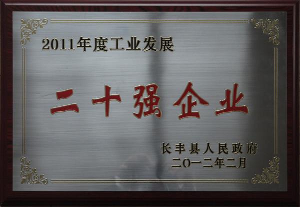 2011年度工业发展二十强企业