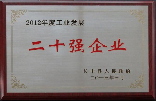 2012年度工业发展二十强企业