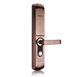 Kaadas凯迪仕智能锁智能指纹锁虚位密码、K+K技术9113