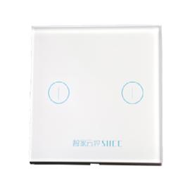 智家云控二位灯光控制器可实现双联双控制功能、钢化玻璃触控面板TY-KG2B01A