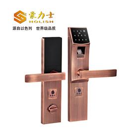 豪力士智能锁防盗智能指纹锁锌合金材质、DC6V(4节5#电池)/DC9V备用钥匙D3310F