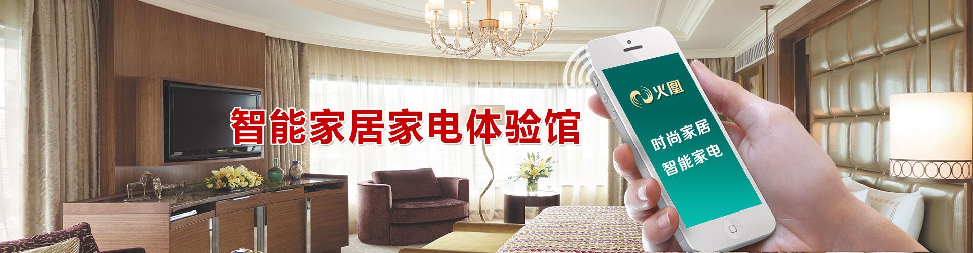 广东火凰电器有限公司