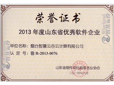 """""""2013年度山东省优秀软件企业"""