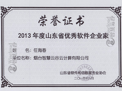 2013年度山东省优秀软件企业家