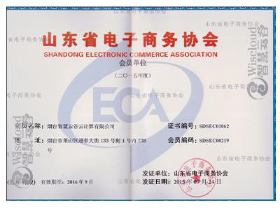 山东省电子商务协会