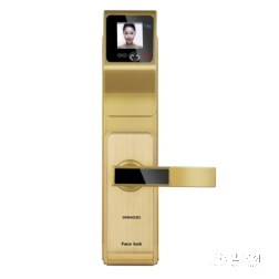 扬子智能锁香槟金人脸识别智能锁YZ-JR1
