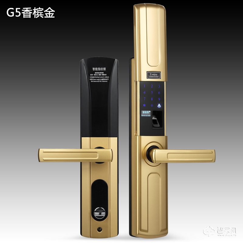 Z-ENJOY智畅香槟金智能指纹密码锁G5