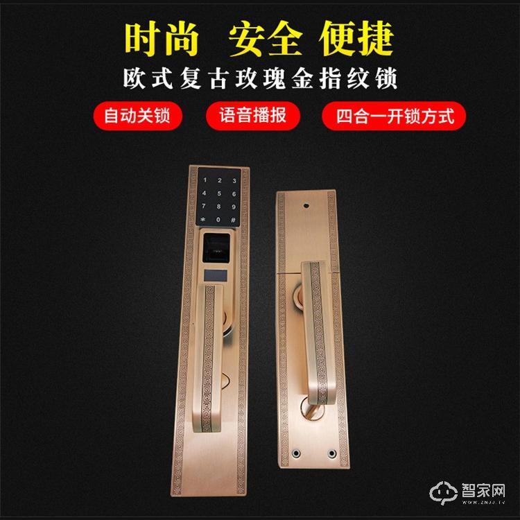 宇飞鸿Y100欧式复古智能指纹锁 四合一开锁方式锌合金智能锁Y100