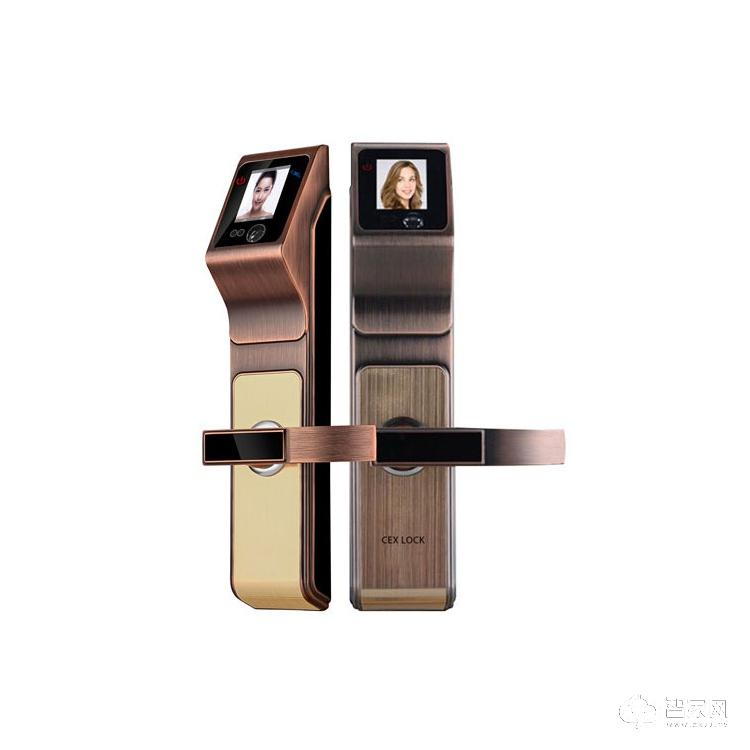 诚尔鑫智能锁智能人脸识别锁 家用入户门智能锁CEX-R3