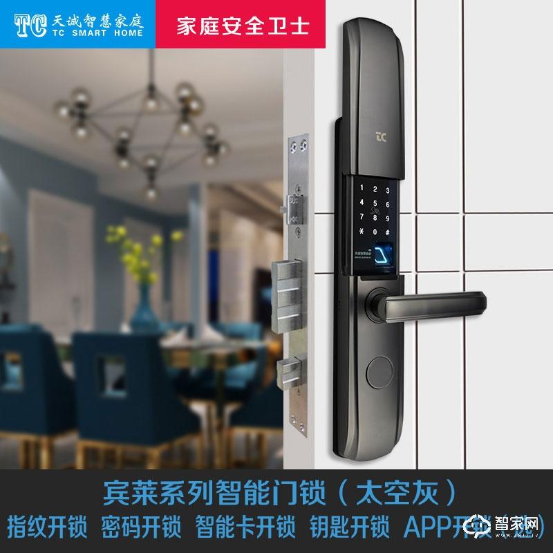 TC天诚智能家居智能门锁  宾莱系列 4种基本开锁方式  颜色可选H-600(太空灰)