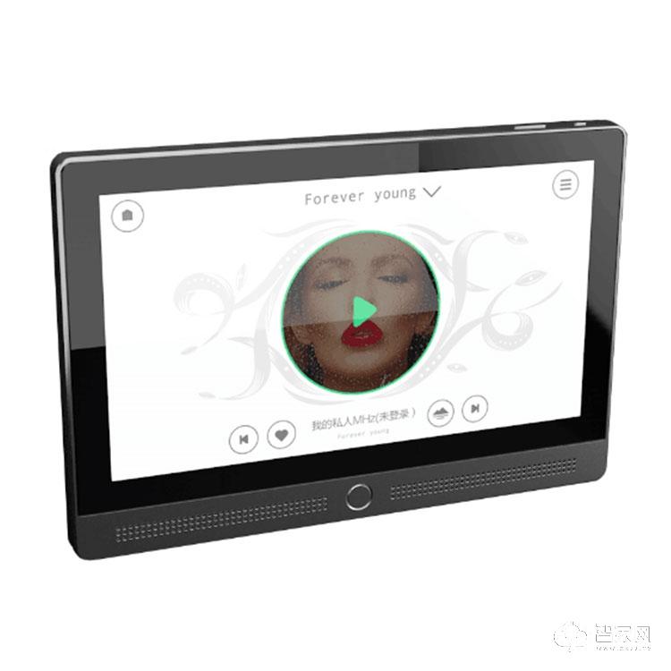 新飞智能家居分布式语控+背景音乐控制系统(客厅)XF-01